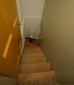 Cellar_stair_dm_jpg_42010-50